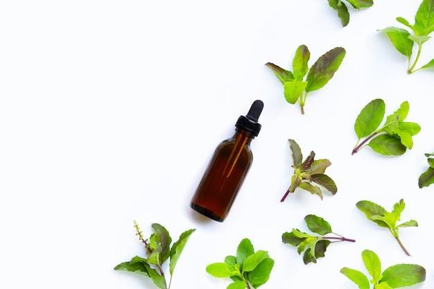 Botella de aceite esencial con hojas de albahaca santa sobre fondo blanco. vista superior