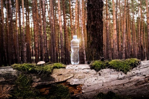 Botella de agua de plástico se encuentra en un registro talado con musgo y setas en el bosque. concepto de agua limpia natural.