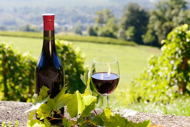 Una botella y una copa de vino tinto en un viñedo.