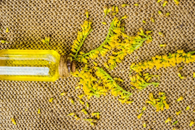 Botella pequeña de aceite de aroma esencial cosmético natural.