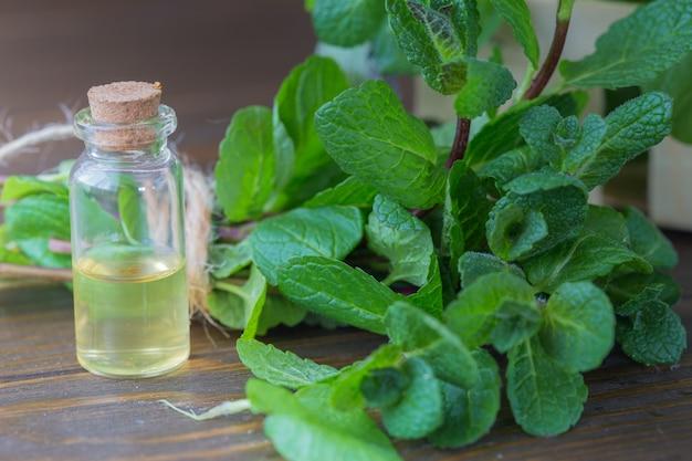 Botella de vidrio con aceite aromático y una ramita de menta en una pared blanca