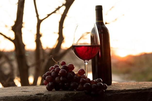 Botella de vino y copa con uvas rojas
