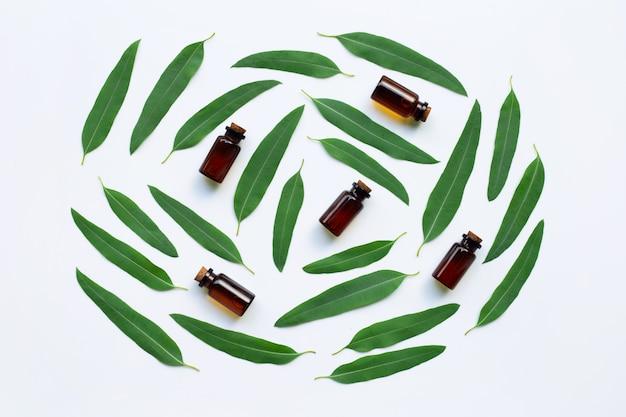 Botellas de aceite de eucalipto con hojas en blanco.