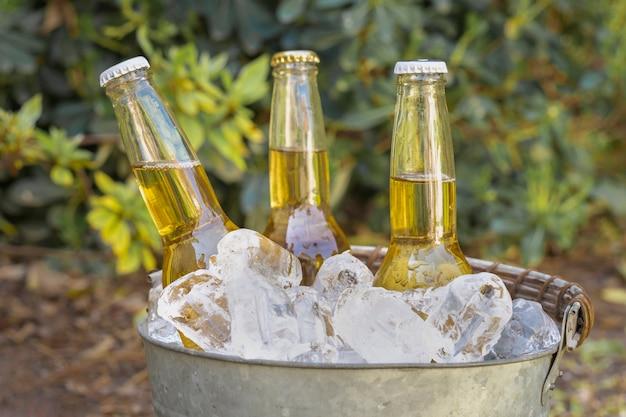 Botellas de bebidas de alto ángulo en cubitos de hielo
