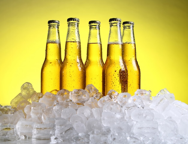 Botellas de cerveza fría y fresca con hielo.