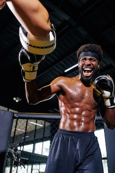 Boxeadores profesionales sparring