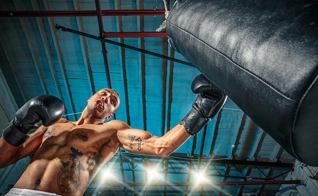 Boxer afroamericano masculino.