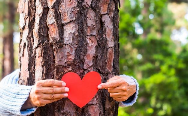 Brazos humanos abrazando el tronco de un árbol en el bosque sosteniendo un corazón de papel en sus manos