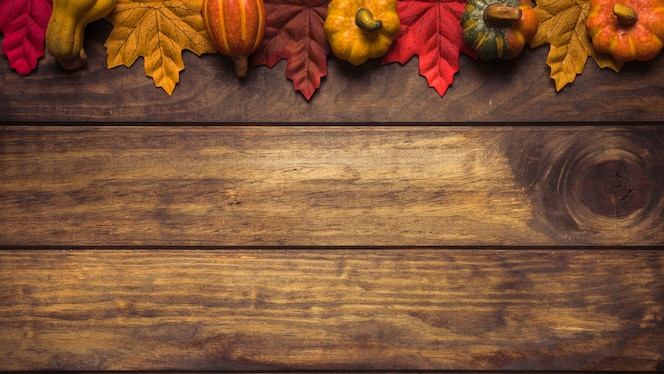Brillante composición de calabazas y hojas de arce
