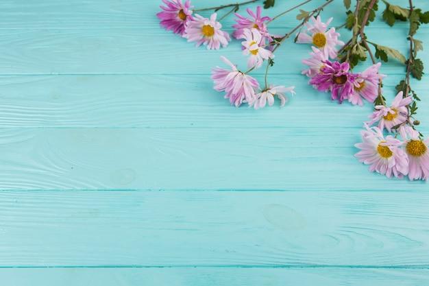 Brillantes flores esparcidas sobre mesa de madera azul.