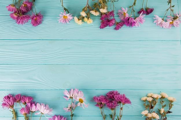 Brillantes flores esparcidas sobre mesa.