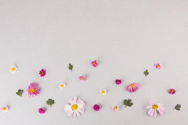 Brillantes flores con hojas esparcidas sobre mesa.
