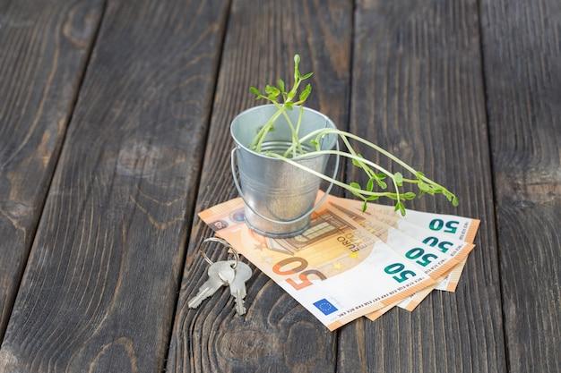 Brotes en un cubo llaves y billetes de cincuenta euros