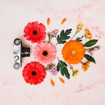 Brotes de flores brillantes con cámara en la mesa