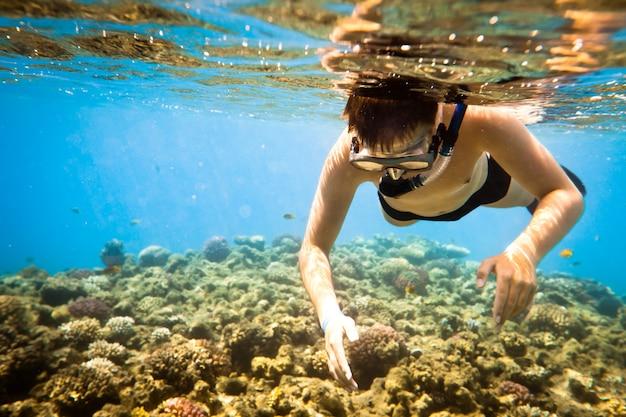 Buceador buceando a lo largo del coral del cerebro