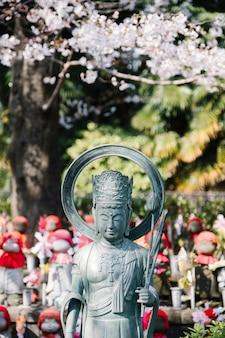 Buda y sakura en el templo de japón