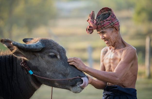 Búfalo y hombre