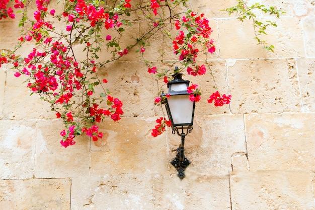 Buganvillas en muro de piedra y luz de calle en mediterráneo