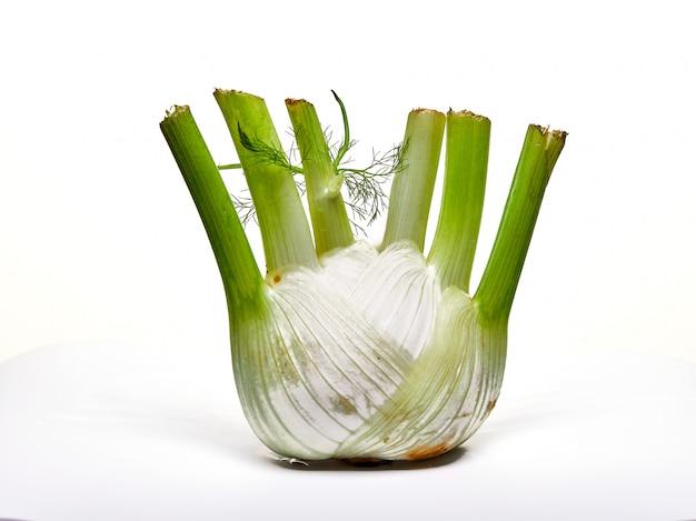 Bulbo de hinojo orgánico fresco aislado en una superficie blanca