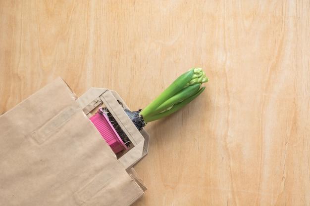 Bulbo de planta en bolsa de papel