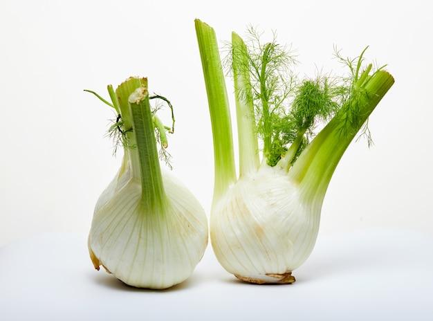 Los bulbos de hinojo orgánico fresco están aislados en una superficie blanca