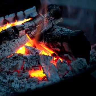 Burning brasas de una fogata en el lago de los bosques, ontario