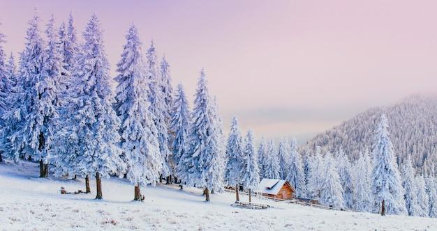 Cabaña en las montañas en invierno