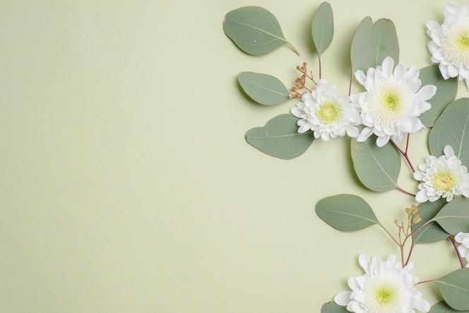 Cabezas de flores en hojas verdes