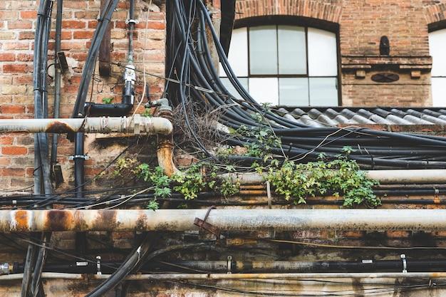 Cableado y malas hierbas en el techo de una antigua fábrica
