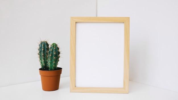Cactus al lado de marco