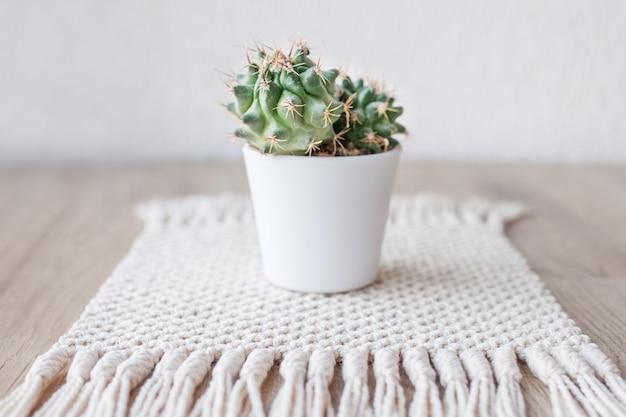 Cactus en maceta sobre alfombra de hilo de algodón natural sobre mesa de madera rústica. estilo ecológico con planta verde. macramé moderno hecho a mano. concepto de decoración del hogar de punto