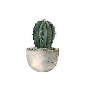 Cactus verde en una maceta de hormigón