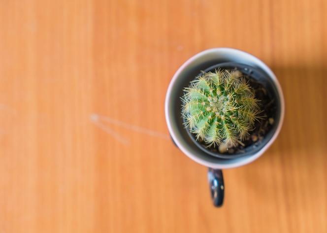 Navidad conejitos fotos y vectores gratis for Cactus navideno
