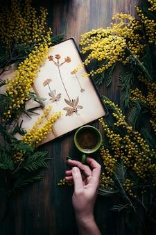 Café negro, mesa de madera, ramas de mimosa y antiguo herbario.