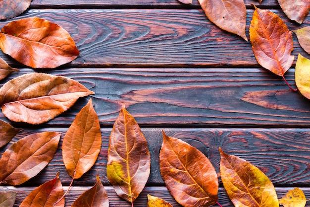 Caída de hojas de otoño en el fondo de madera y espacio para texto