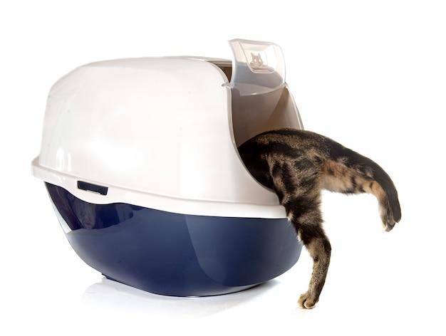 Caja de arena para gatos cerrada