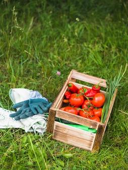 Caja de madera con verduras frescas en la hierba verde