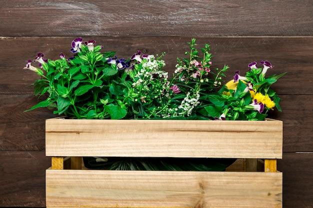 Caja de madera con flores de jardín.