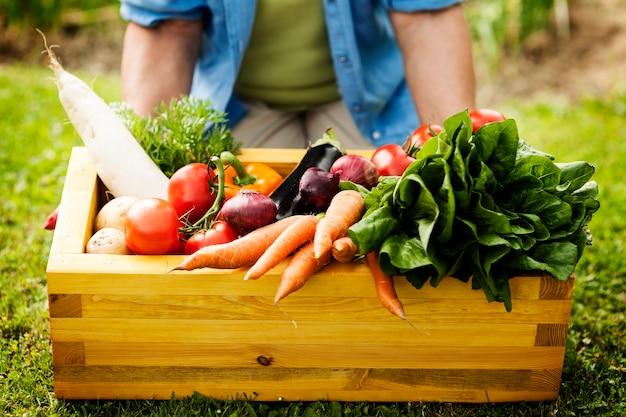 Caja de madera llena de verduras frescas
