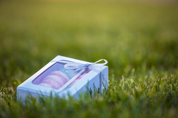 Caja de regalo de cartón blanco con coloridas galletas macaron hechas a mano sobre fondo de césped de hierba verde.