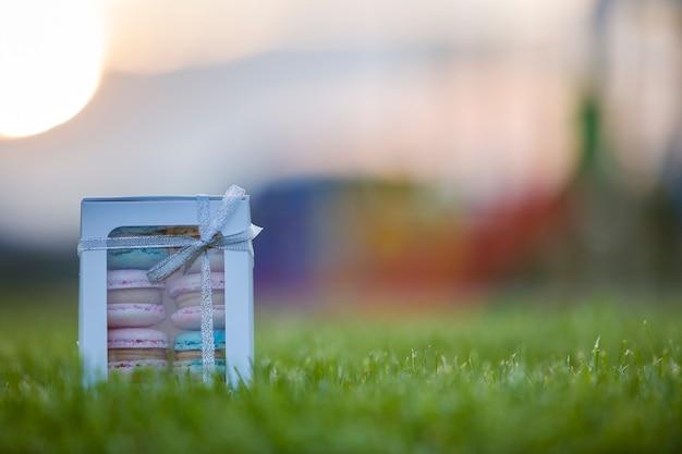 Caja de regalo de cartón con coloridas galletas macaron azul rosa hecho a mano sobre fondo verde hierba borrosa.