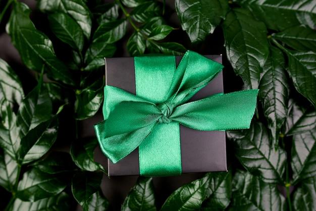 Caja de regalo negra de lujo con cinta verde sobre un fondo oscuro con hojas a los lados
