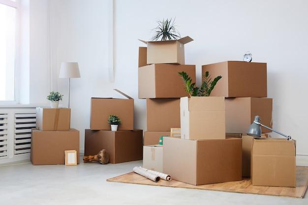 Cajas de cartón apiladas en una habitación vacía con plantas y pertenencias personales en el interior, concepto de mudanza o reubicación