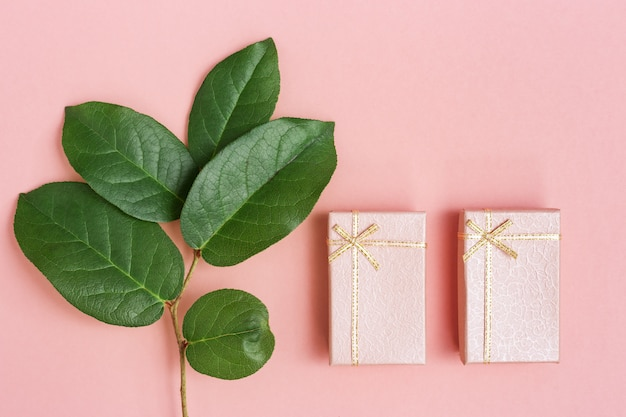 Cajas cerradas y rama con hojas verdes