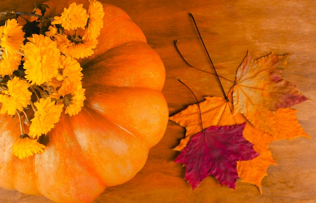 Calabaza, flores de otoño y hojas.