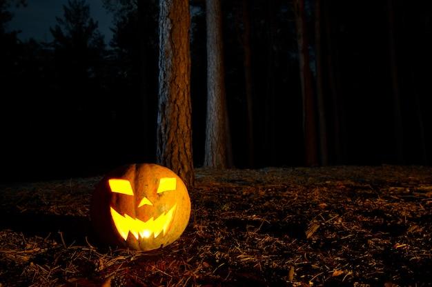 Calabaza de halloween en un bosque por la noche