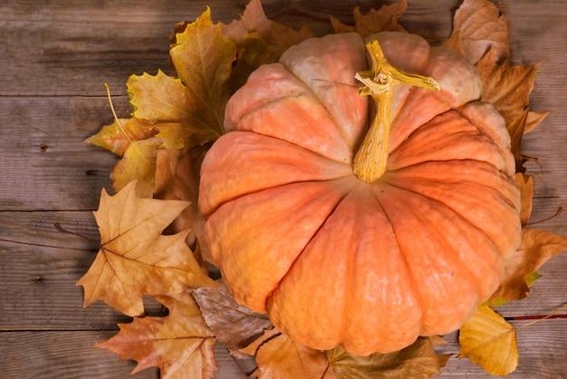 Calabaza y hojas de otoño sobre fondo de madera vieja