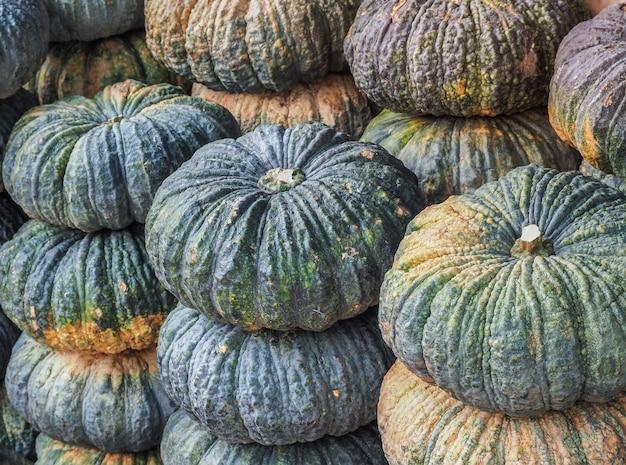 Calabaza orgánica fresca del mercado local de agricultores.