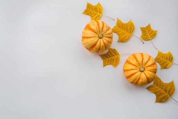 Calabaza de otoño y hojas de otoño