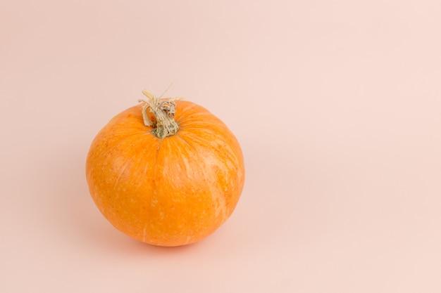 Calabaza sobre fondo naranja